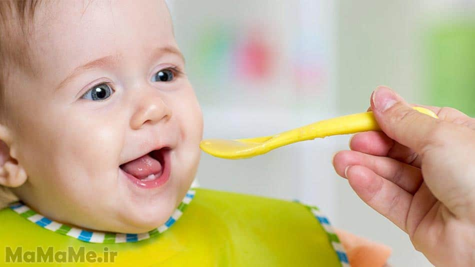 غذای-کمکی-نوزاد-نه-ماهه